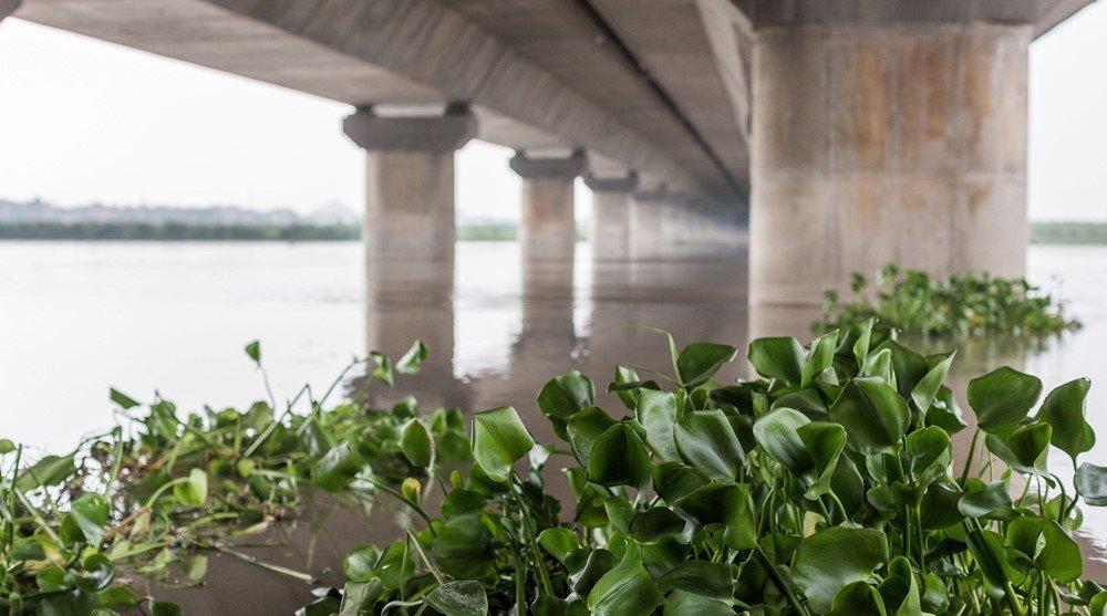 Noida Toll Bridge